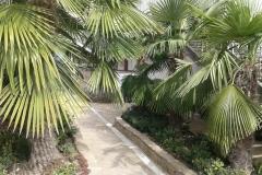 мини отели Алушта официальный сайт