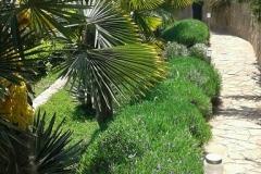 базы отдыха в Алуште